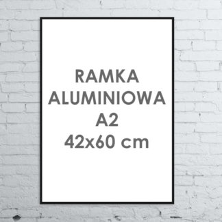 Rama aluminiowa ALU G3 A242×60 cm