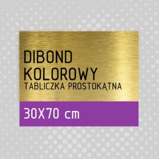 Tabliczka prostokątna DIBOND KOLOROWY 30×70 cm