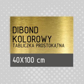 Tabliczka prostokątna DIBOND KOLOROWY 40×100 cm