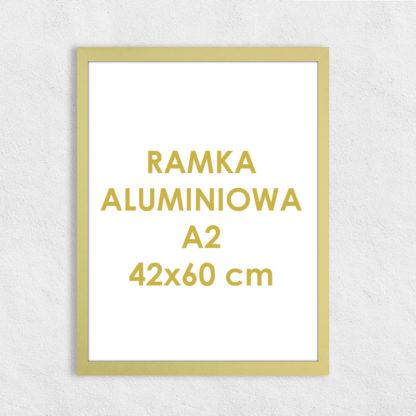 Rama aluminiowa prostokątna ALU F5 A2 42×60 cm
