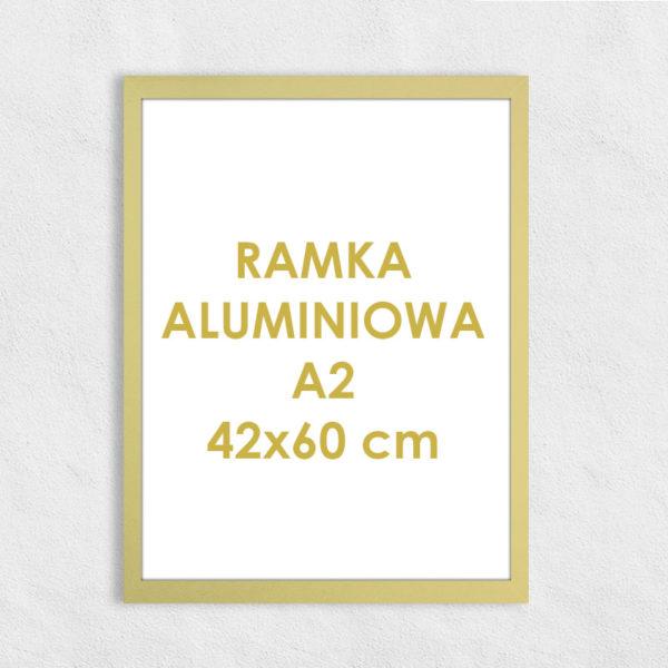 Rama aluminiowa prostokątna ALU F5 A2 42x60 cm