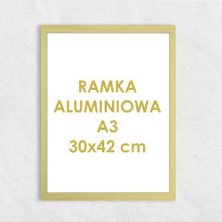Rama aluminiowa prostokątna ALU F5 A3 30×42 cm