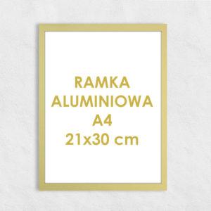 Rama aluminiowa prostokątna ALU F5 A4 21x30 cm