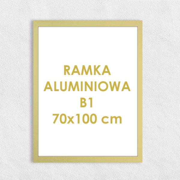 Rama aluminiowa prostokątna ALU F5 B1 70x100 cm