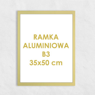 Rama aluminiowa prostokątna ALU F5 B3 35×50 cm