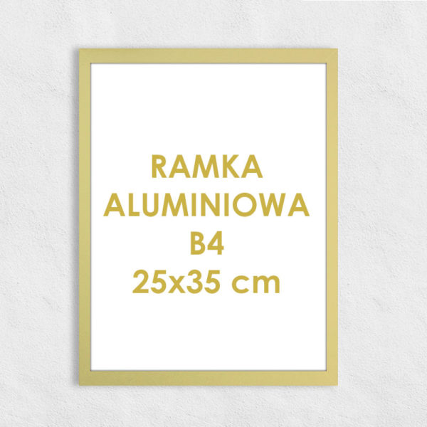 Rama aluminiowa prostokątna ALU F5 B4 25x35 cm