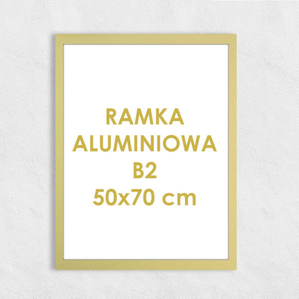 Rama aluminiowa prostokątna ALU F5 B2 50x70 cm